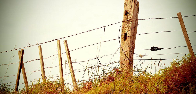 Fence-Filtered